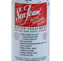 Sea Foam Motor Treatment and Tune-up